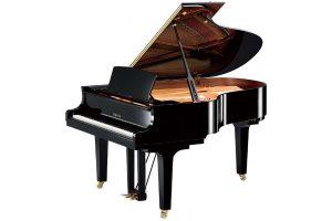 Pianoforti Acustici